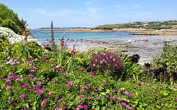 Scilly Isles beach and flowers